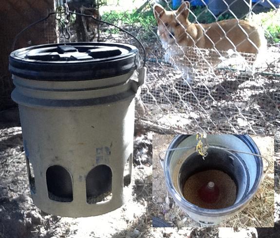 Deer Feeder Bucket Plans