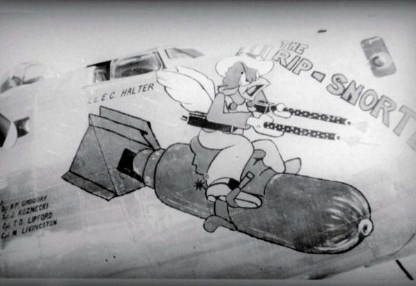 Hawaii Aviation World War Ii Nose Art