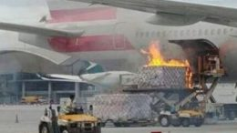 American Airlines flight canceled after cargo loader bursts into flames 20