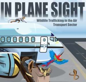 Wildlife traffickers exploiting air transport sector worldwide