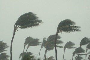 FAA issues Hurricane Michael update