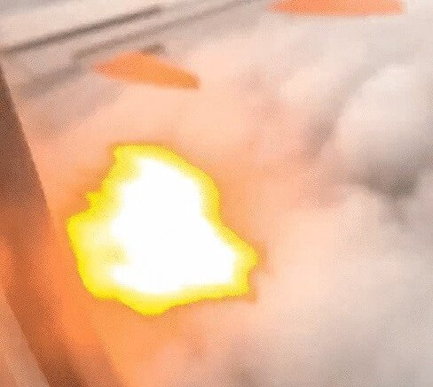 Bird strike sets plane engine on fire, prompts horrifying emergency landing 1
