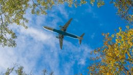 IATA urges EU to support European aviation Green Deal 50