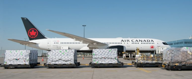 Air Canada Cargo announces launch routes for its new freighter aircraft 37
