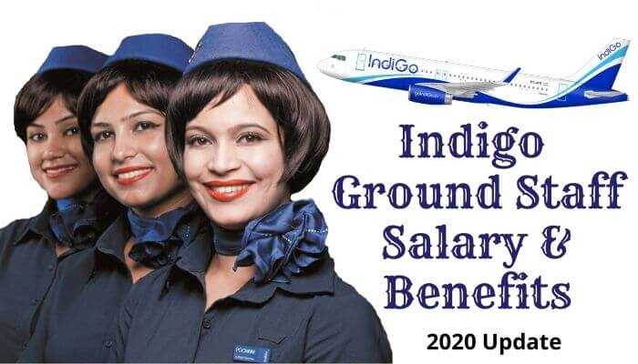 Indigo Ground Staff Salary