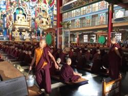 Tibetan Buddhist temple in Bylakuppe