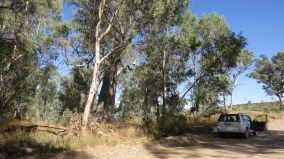 Wirra River(bed)