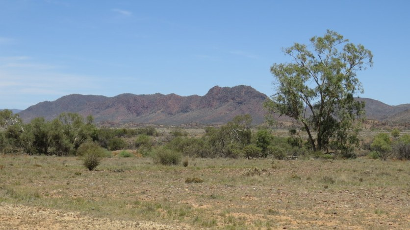 Views between Blinman and Arkaroola