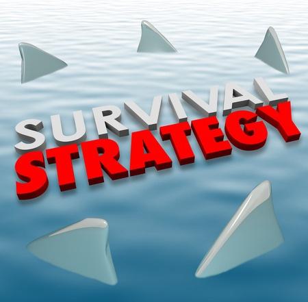 Survival Strategy Plan