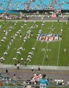 Bank of america stadium also home carolina panthers rh aviewfrommyseat