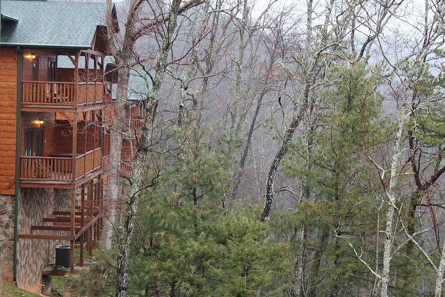 I stood outside the master bedroom to get a shot of the neighboring cabins and the nearby woodland.