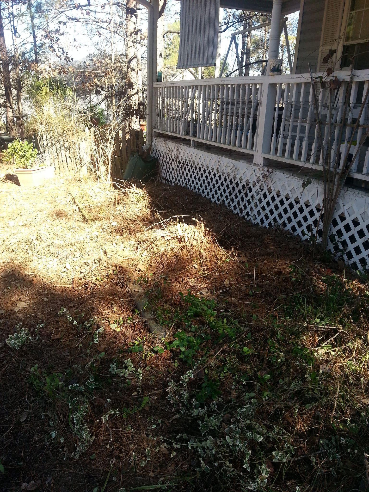 Renee's Garden 3