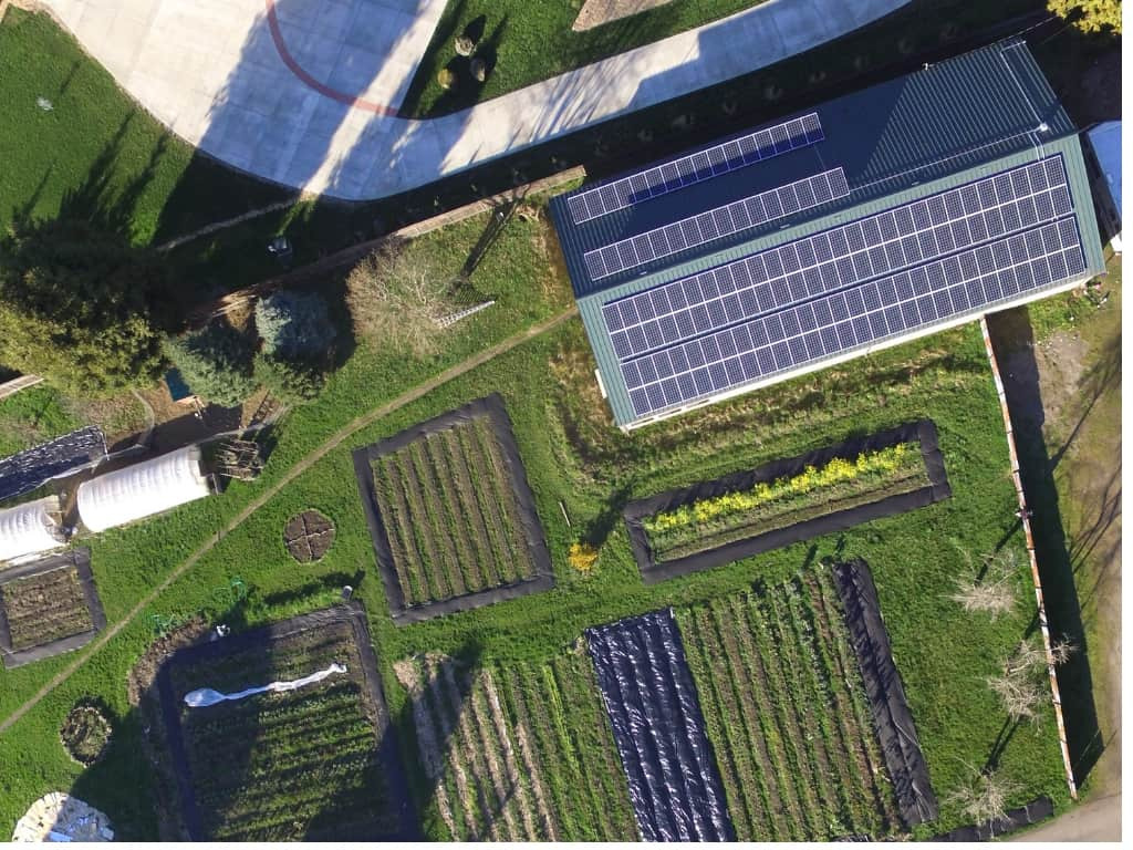 Above view of Hale csa farm in vancouver vancouver