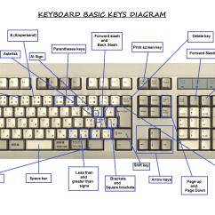 Usb Keyboard Diagram Cow Meat And Key Definitions Avilchezj