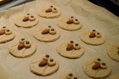 Eulen-Cookies mit Hafer & Orange