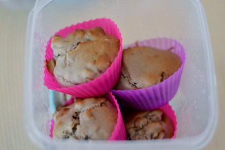 Funky-Monkey-Banana-Muffins from Vegan for Youth