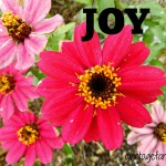 One Little Word…..JOY