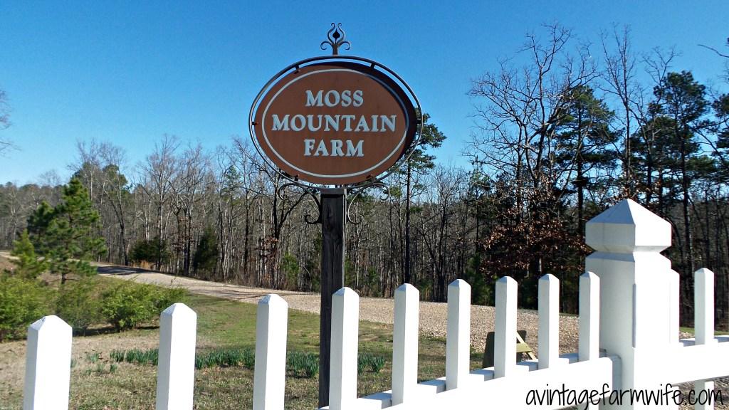 Moss Mountain Farm