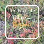 My Favorite Things…..October Edition