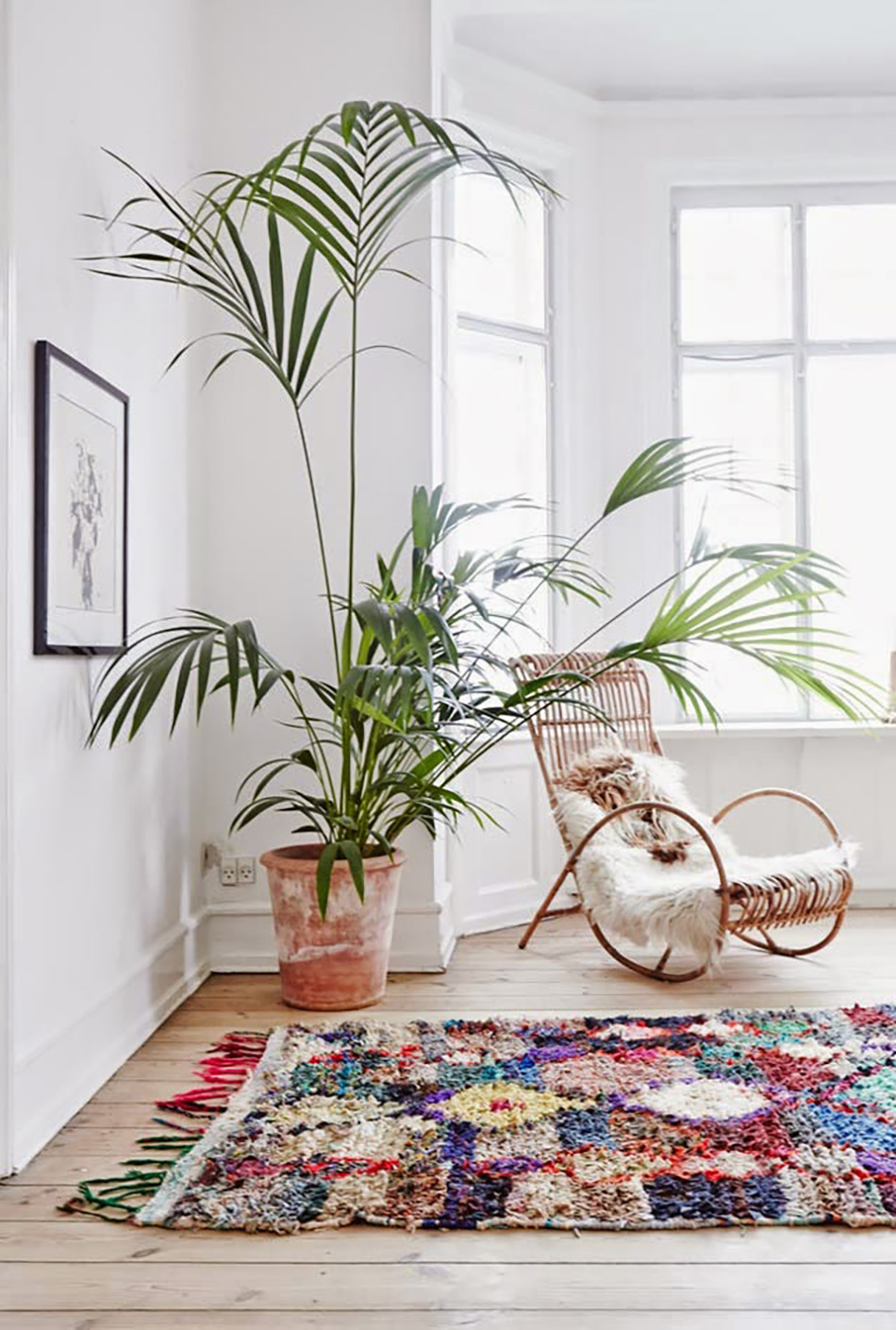 Indoor Living Room Decor With Plants