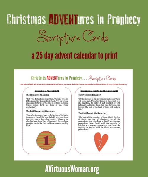Christmas ADVENTures in Prophecy {Scripture Cards} a 25 day advent calendar to print @ AVirtuousWoman.org
