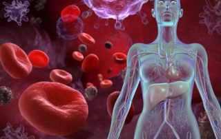 Esami del sangue - come leggere i valori del profilo anemia