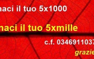 5xmille a avis c.f. 03469110377