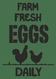 Φρέσκα αυγά από τη φάρμα μας