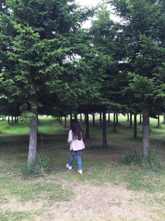 small trees!