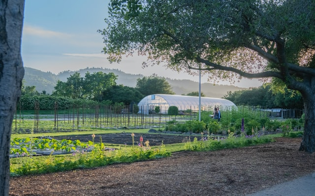 Ferme en polyculture, pour la transition alimentaire