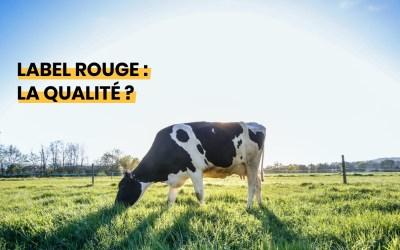 Vaches d'Alsace en plein air : Label Rouge ?