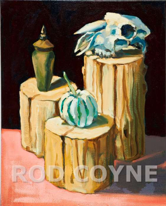 Sheep Skull Still Life - Canvas Print