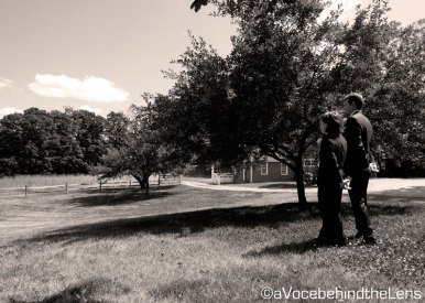 A photograph of the groom and his little brother. They even stand the same way!