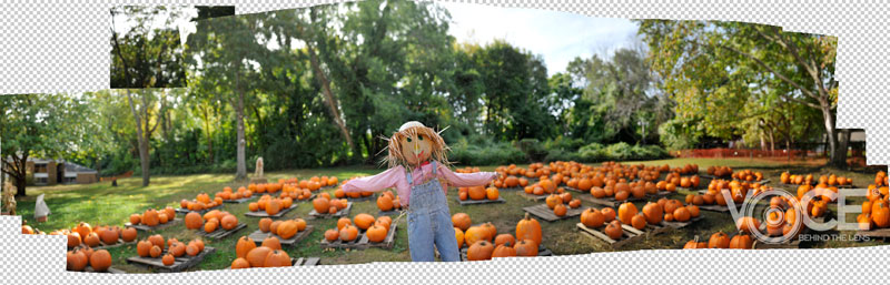 Scarecrow - Photomerge Part 1