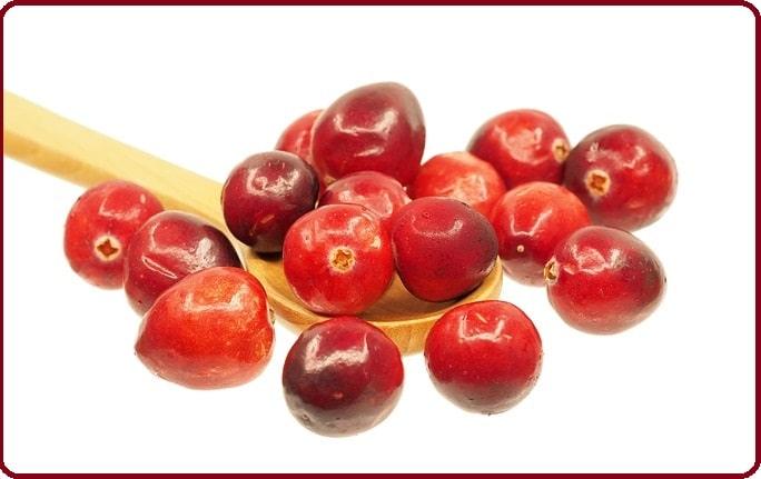 Cranberry (canneberge): bienfaits, jus, séchées, cystite, gélules, recettes…