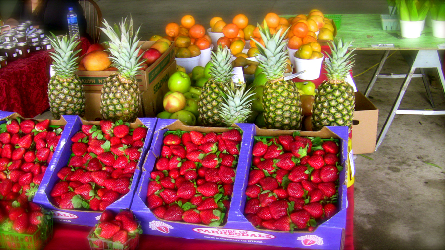 Fresh Market Pensacola Fl