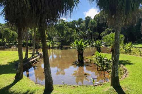 jardin botanique de Curepipe