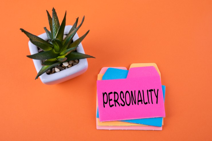 """a pile of different coloured filing cards with """"personality"""" written on the top one.  items are on an orange table top beside a green cactus in a white pot"""