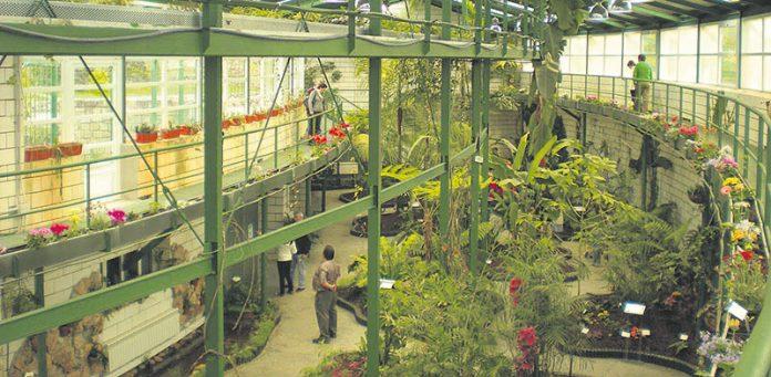 Invernadero-Parque-del-Principe