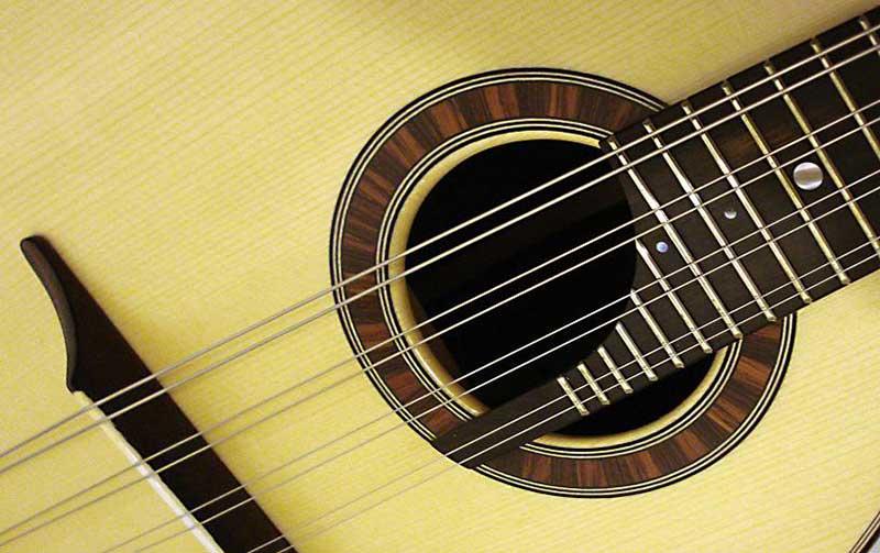 Las cuerdas de la mandolina