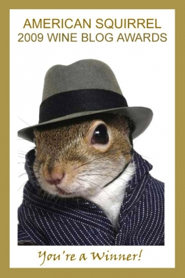 american-squirrel-blog-award-header3