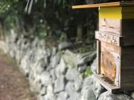 Hives Set