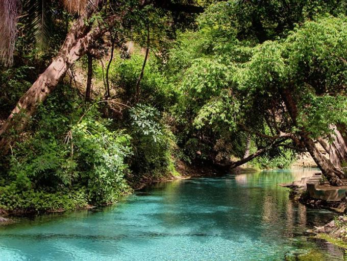 yankari game reserve