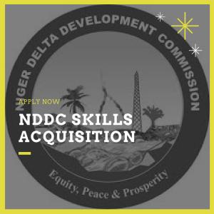 nddc skills acquisition 2017
