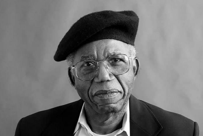 best nigerian author