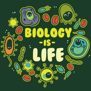 biology waec syllabus