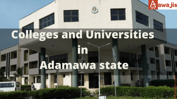 Colleges and Universities in Adamawa state