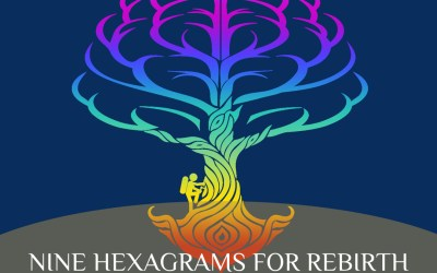 Change Your Character: Nine Hexagrams for Rebirth by Lakshmi Narayan