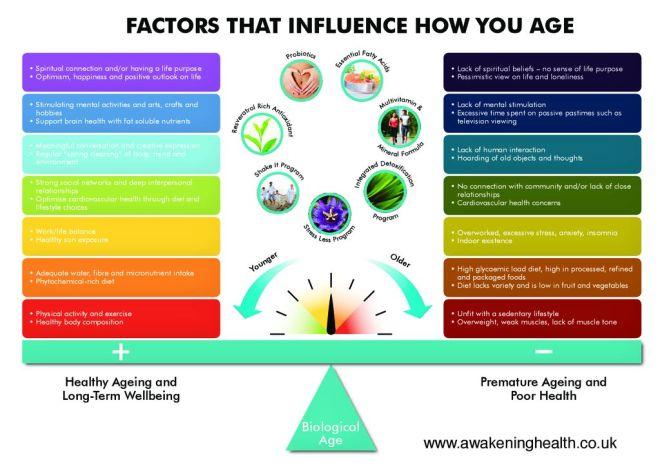 thumbnail of healthy-ageing-diagram