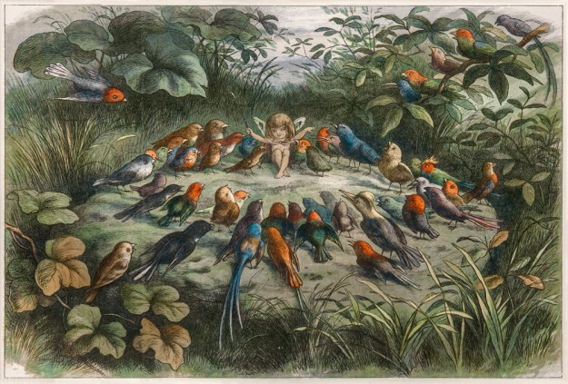richard-doyle-rehersal-in-fairy-land_1